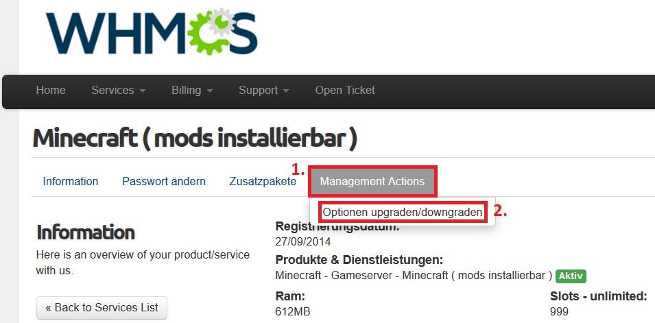Minecraft Spielen Deutsch Minecraft Server Domain Erstellen - Minecraft server domain erstellen kostenlos